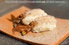 天草の車海老の寿司